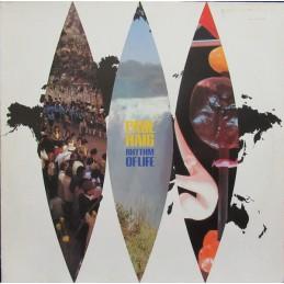 Paul Haig – Rhythm Of Life