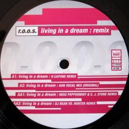 R.O.O.S. – Living In A...