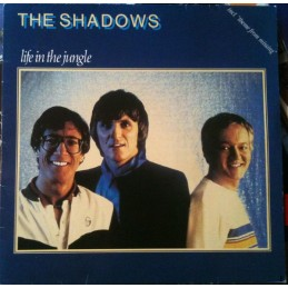 The Shadows - Life In The...