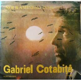 Gabriel Cotabiță – Noi...