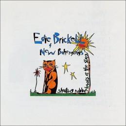 Edie Brickell & New...